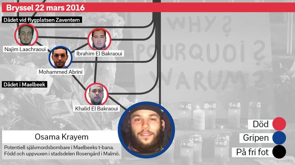Terrornätverket i Bryssel