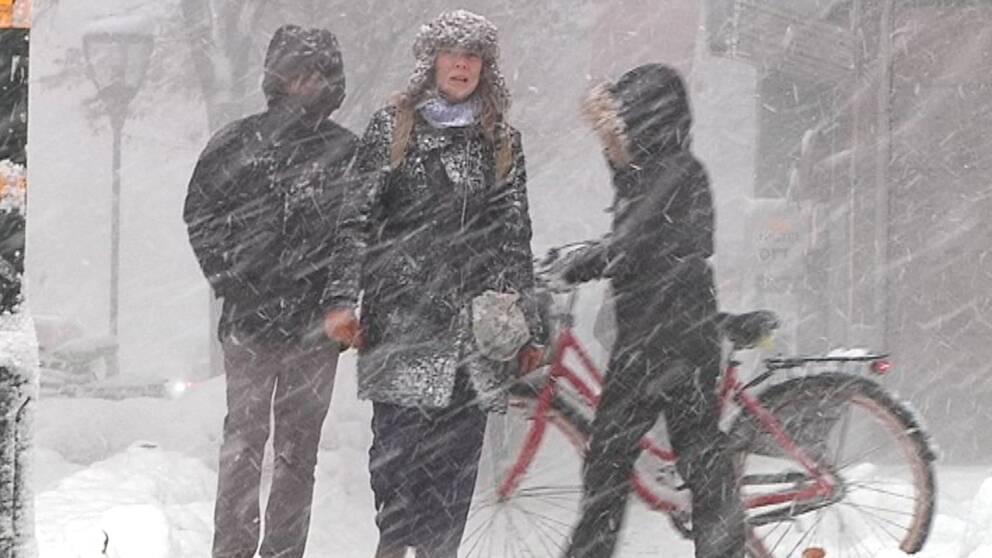 Folk som promenerar i snö