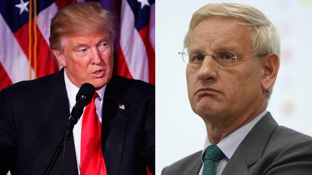 DOnald Trump och Carl Bildt