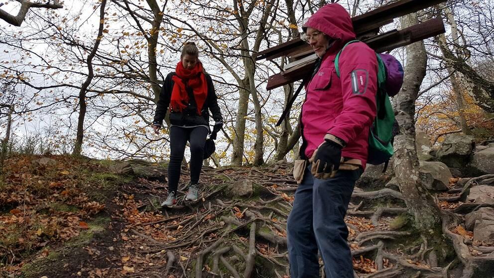 40000 turister besöker årligen Nimis på Kullaberg. Det påhittade landet Ladonien på kullaberg har 18000 medborgare.