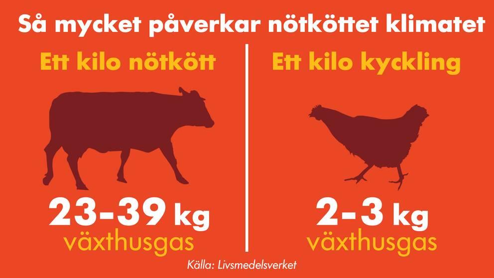 Grafik köttets klimatpåverkan.