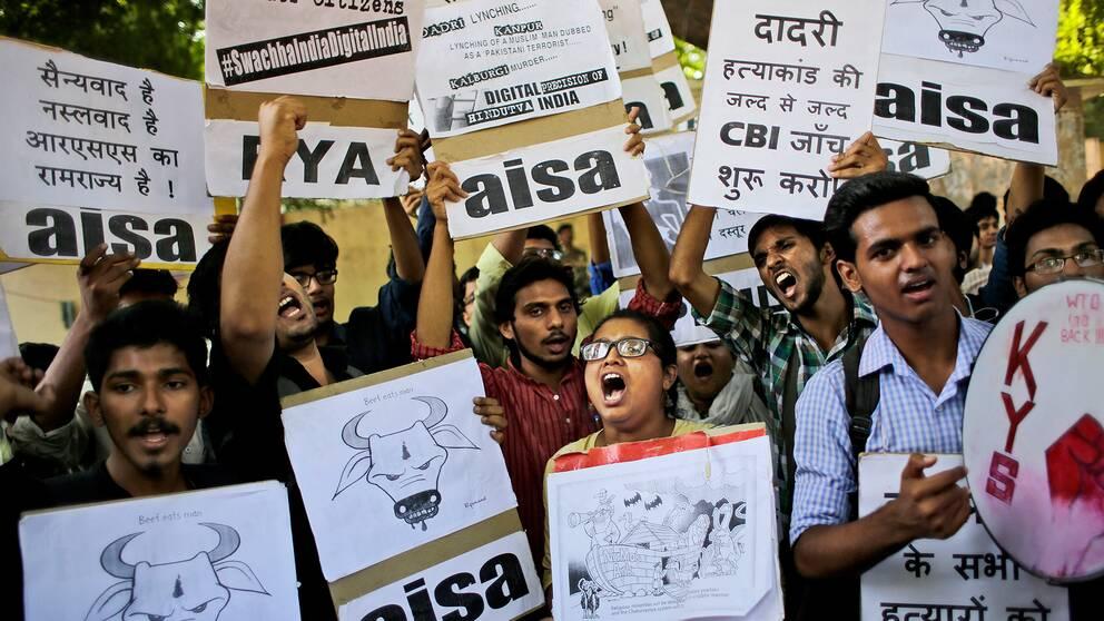 Protester bröt ut på flera håll i Indien efter att en 52-årig man slagits ihjäl och hans son skadats svårt när de blev angripna misstänkta för att ha kött från ko. Arkivbild 2015