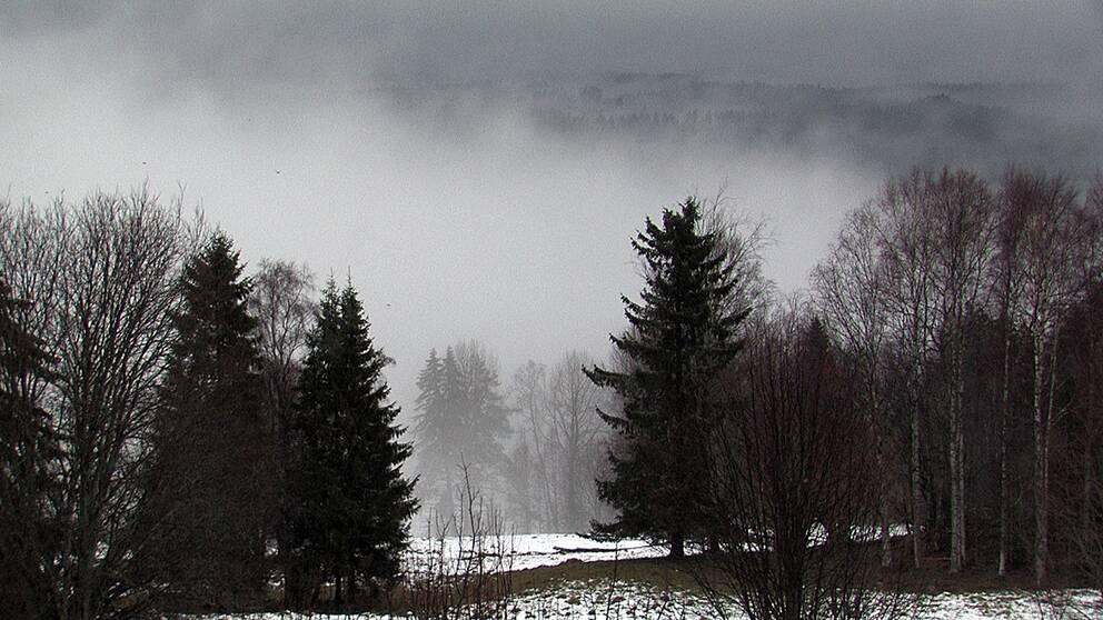 Dimma över snö.