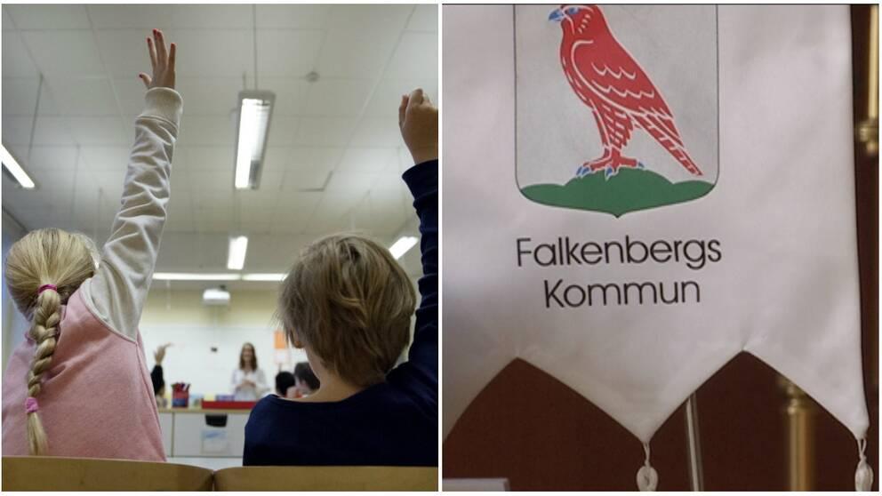 Skola, Falkenbergs kommun