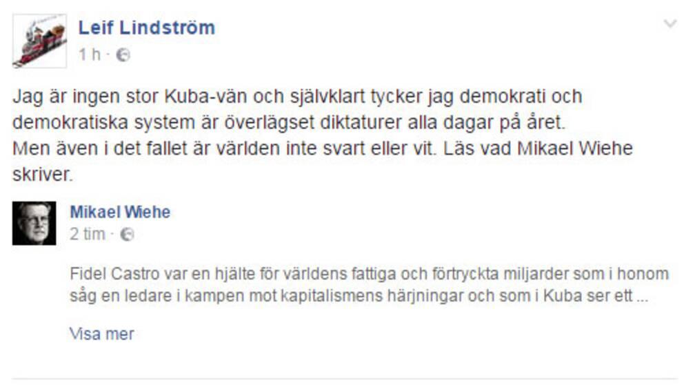 Leif Lindström (V) är något mer kritisk till Castro än Ohly