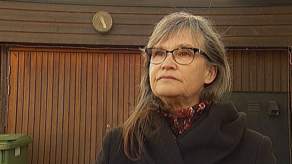 Annika Lillemets, föredetta riksdagsledamot för Miljöpartiet, är med och startar upp ett nytt partiet Vändpunkt.