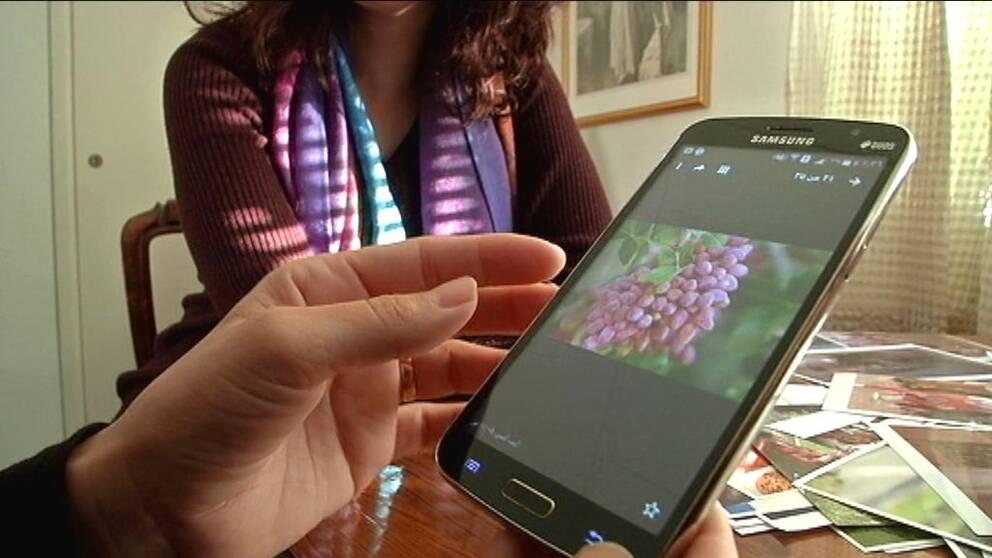 Amina Albasha som kom till Gotland för ett år sedan, berättar om bilderna som hon har i sin telefon. Hon berättar om hur hon brukade vara med och skörda pistagenötter i hemlandet Syrien.