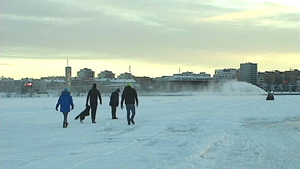folk och en hund på isen i Luleå