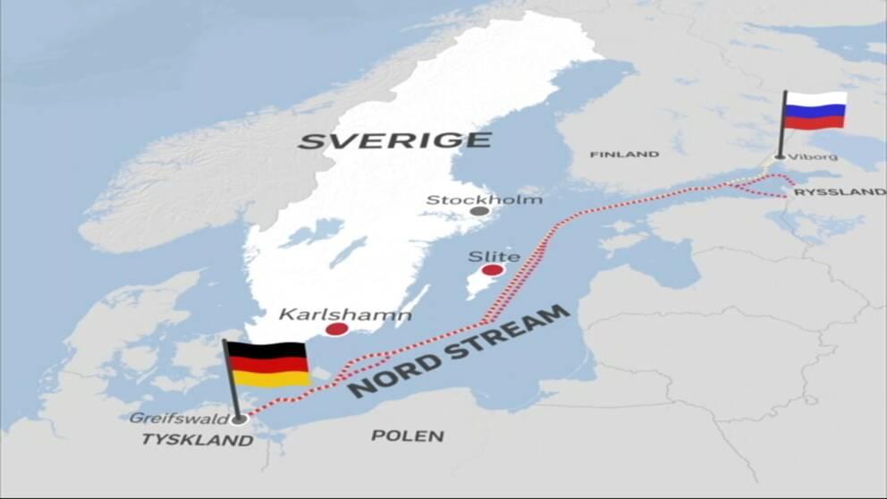 Grafiken visar hur den planerade gasledningen skulle gå från Ryssland till Tyskland