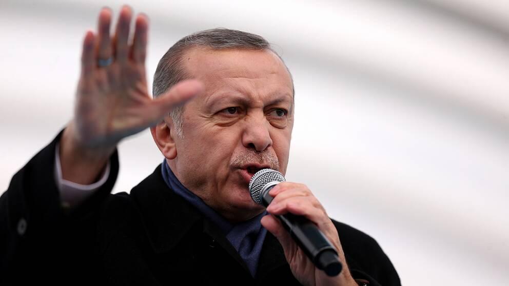Turkiets president Erdogan