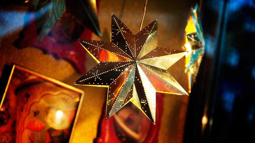 Julstjärna.
