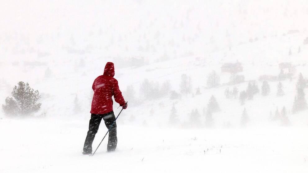 Kombinationen av mycket nederbörd och hård blåst bygger upp snömängder mot fjällens branter.