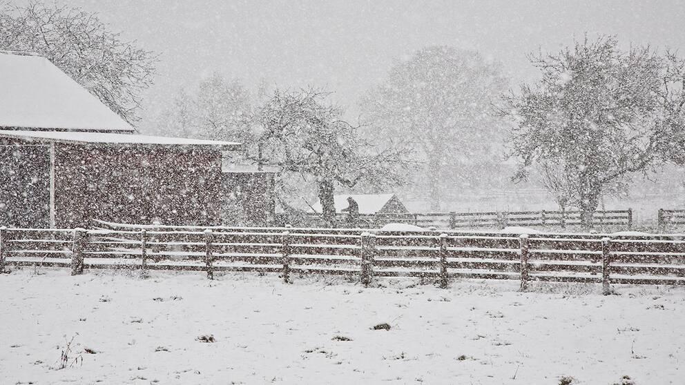 Gården i snöfall