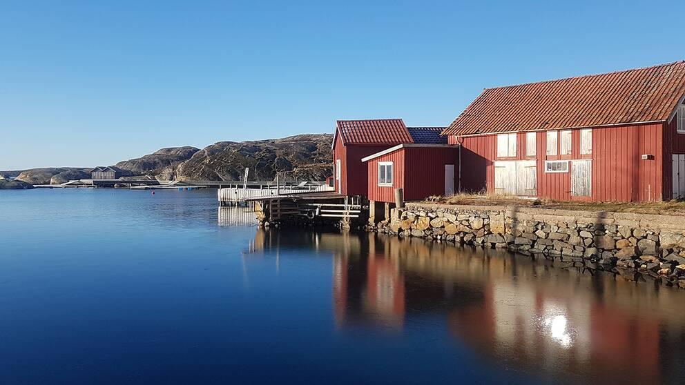 Bild från Hallevikstrand, Orust