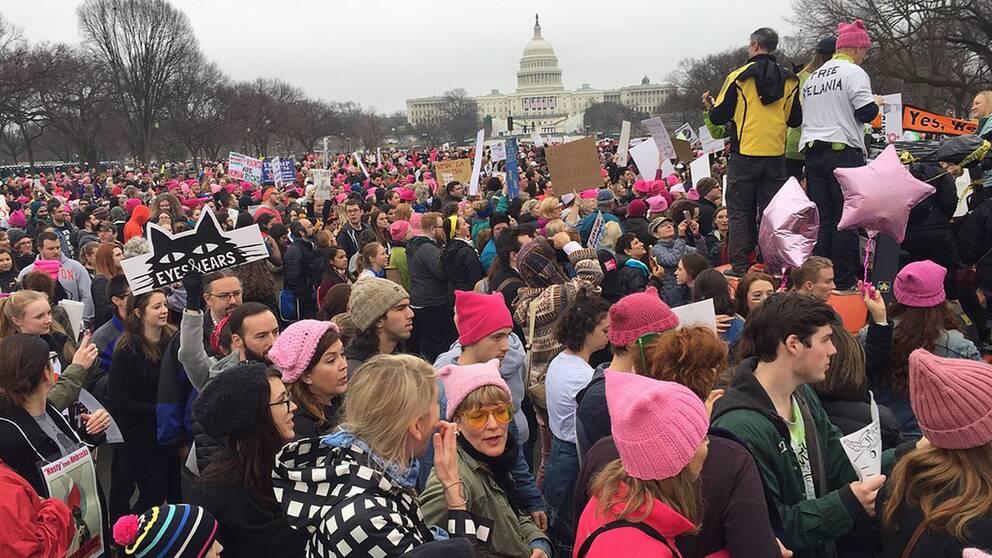 Hundratals personer med rosa mössier i washington.