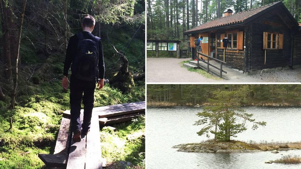 Bilder från Tivedens nationalpark