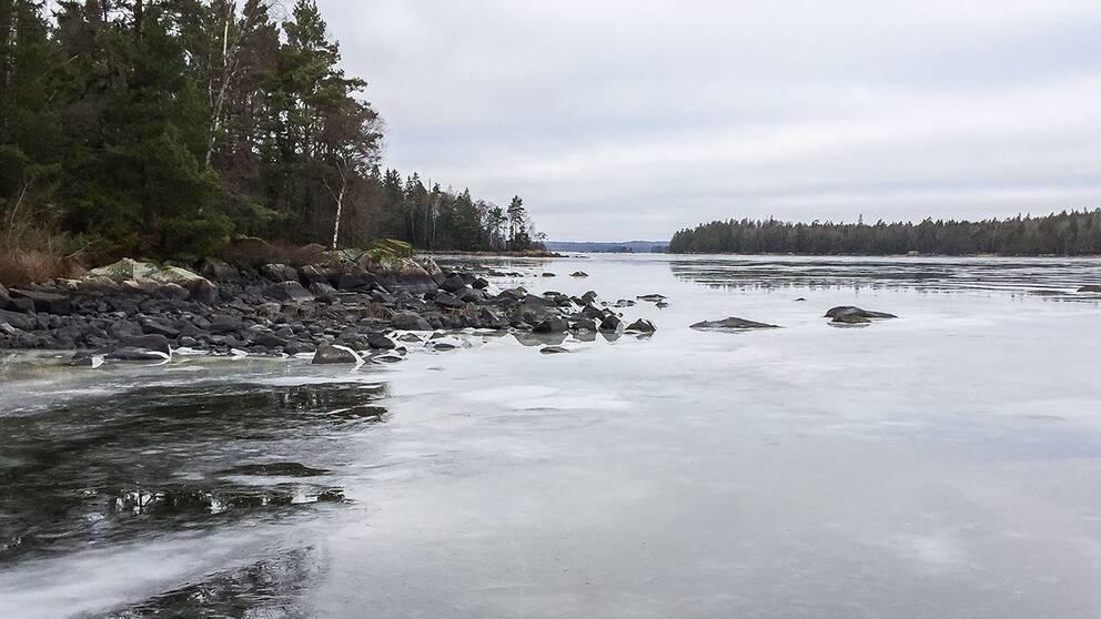 Området vid sjön Åsnen i Kronobergs län ska bli nationalpark.