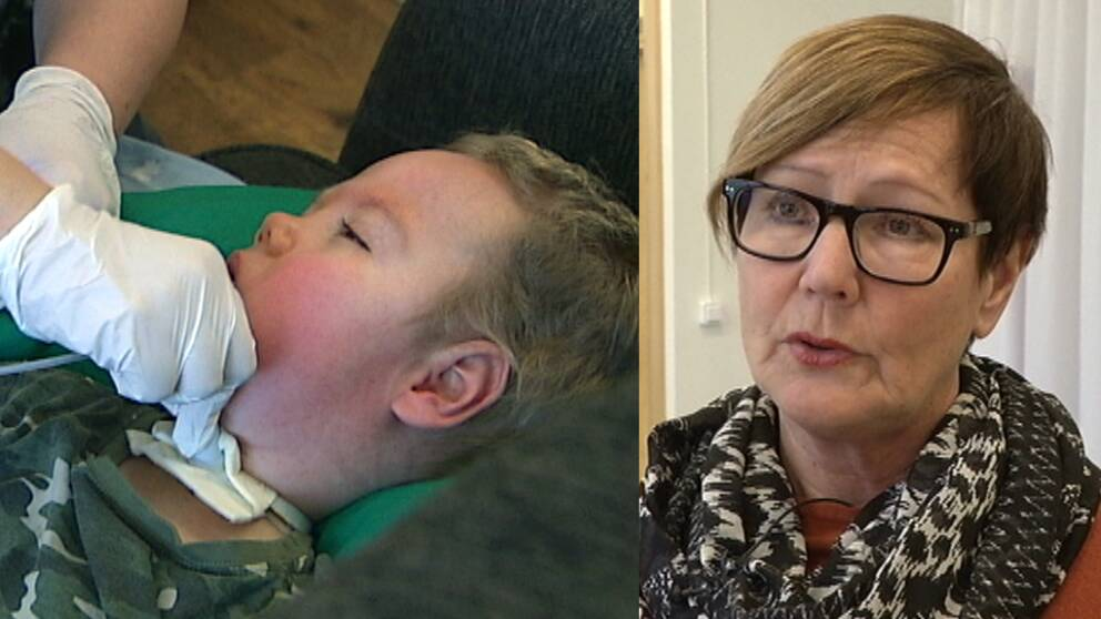 Amadeus, Birgitta Lindgren som är områdesansvarig på Försäkringskassan