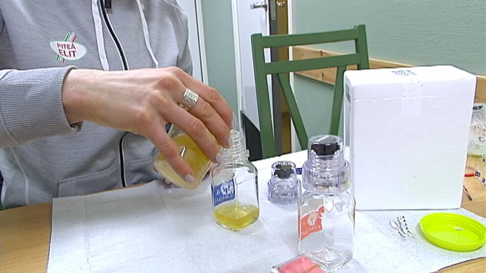 urinprov