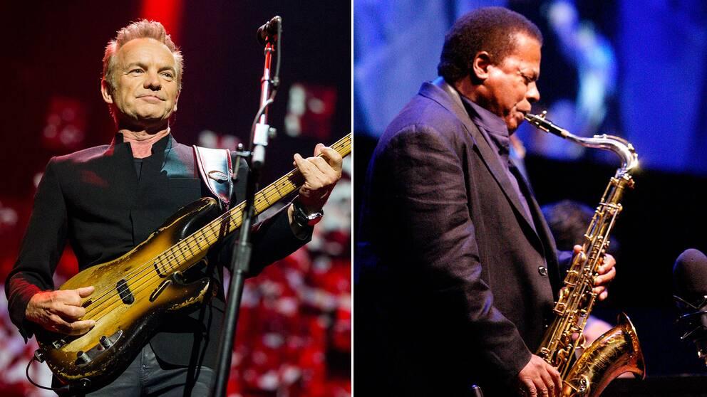 Sting och Wayne Shorter.