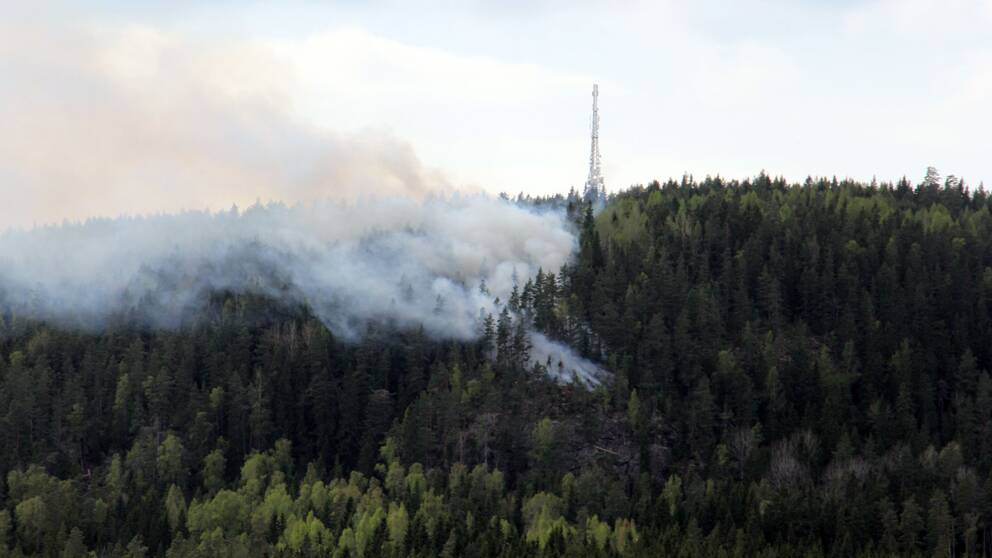 Skogsbrand rasade norr om orsa