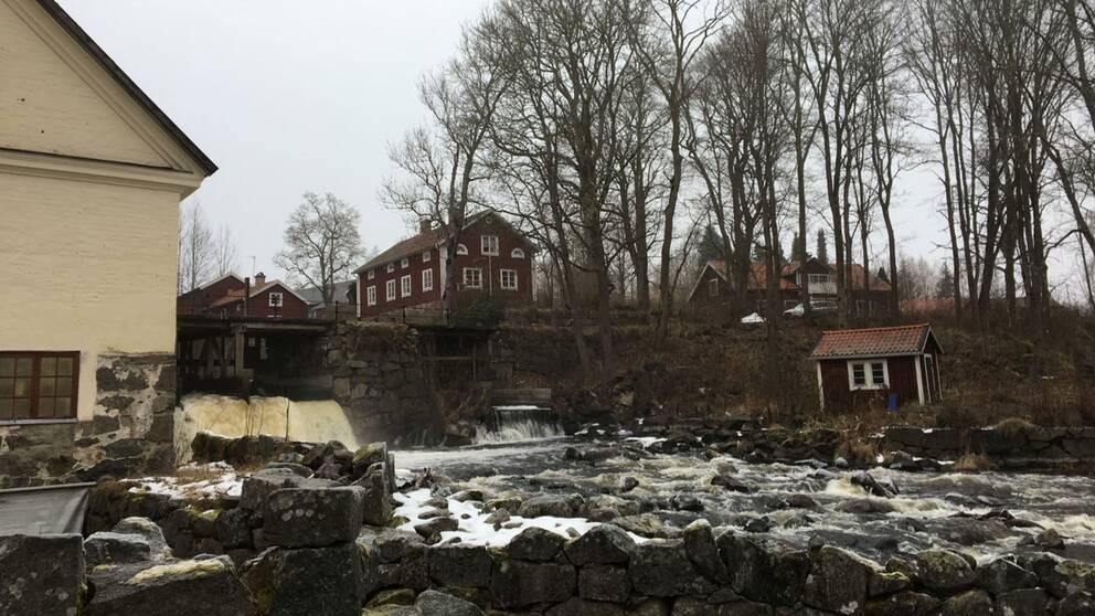 Området kring dammen i Järle.