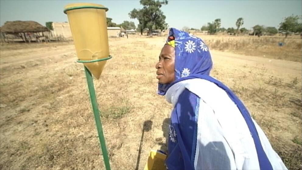 bonde Sali Samake Mali rapporterar väder klimat regn