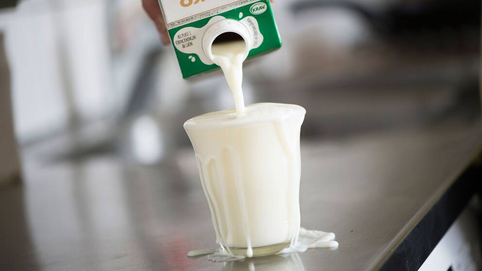 Mjölk hälls i ett glas.