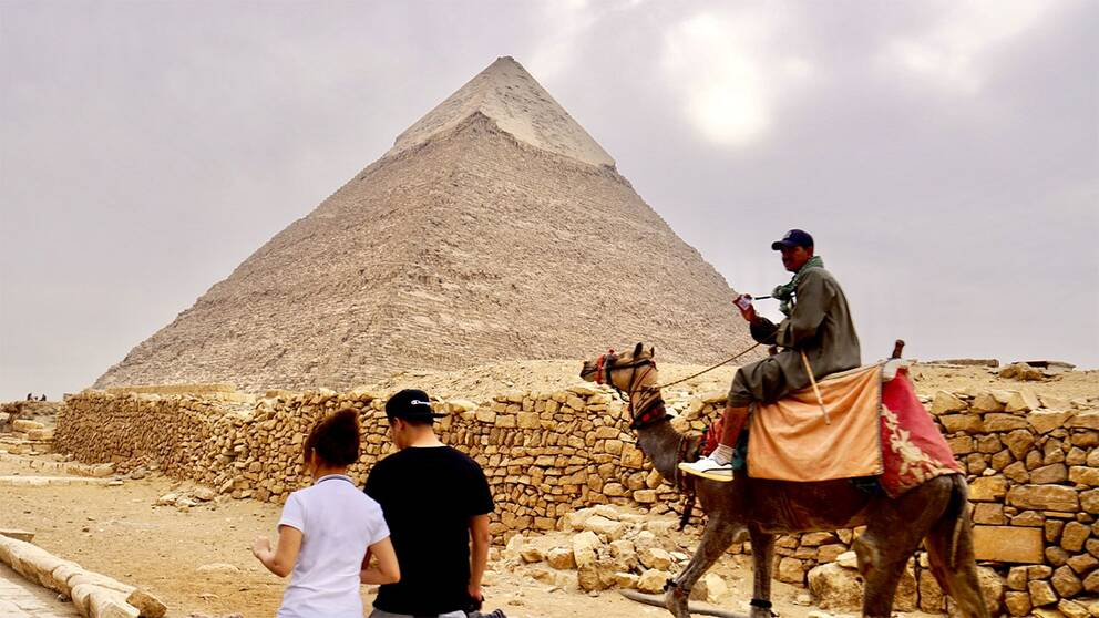 Pyramid och kamel