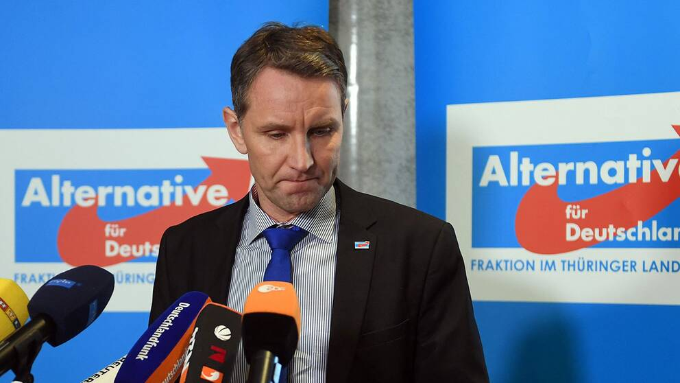 Björn Höcke hävdar att han utnyttjats av personer som slåss om makten i partiet.