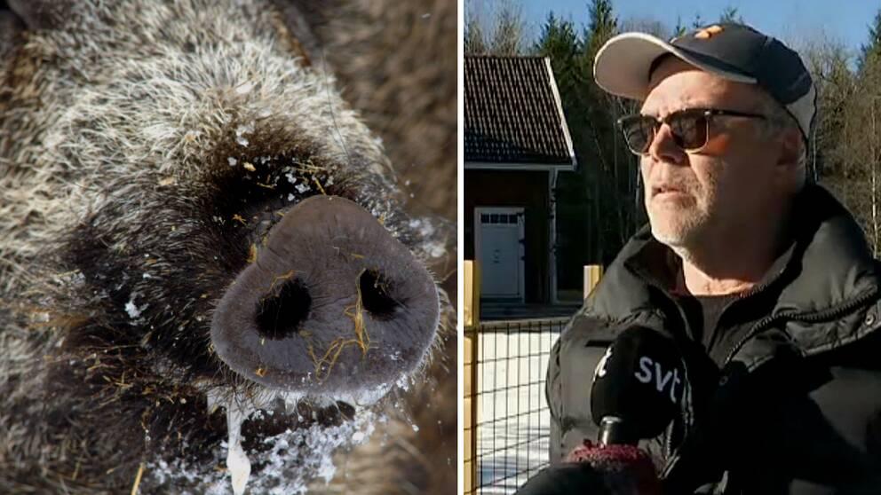 Sven Andersson bor i närheten av kyrkan i Kärda och han har tvingats sätta upp staket för 40.000 kronor för att skydda sin egendom.