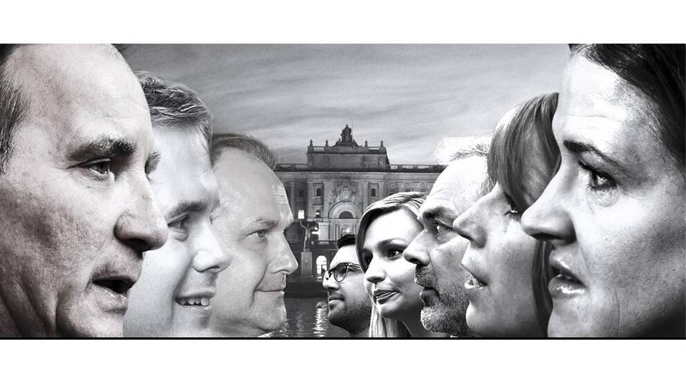 Sveriges partiledare