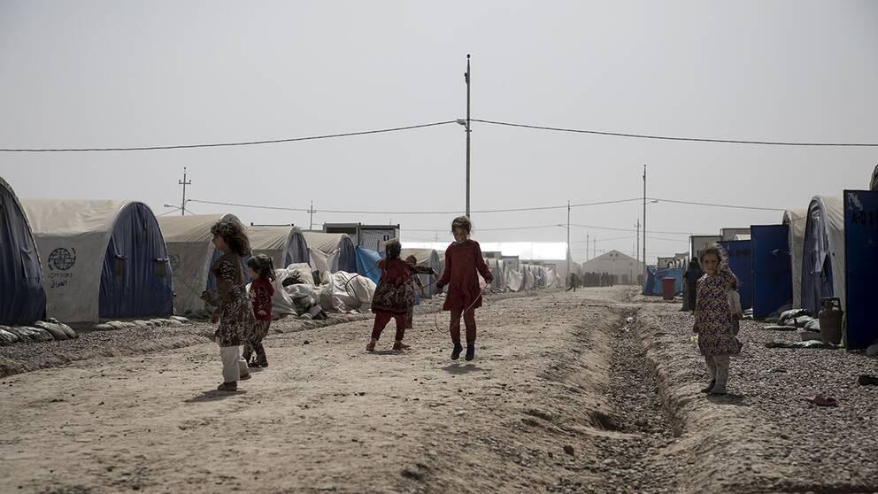 I flyktinglägret Qayyarah, utanför Mosul bor idag över 30.000 flyktingar som alla kommit från Mosul.