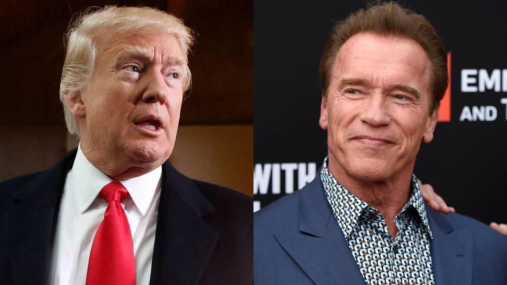 Schwarzenegger i ryssland
