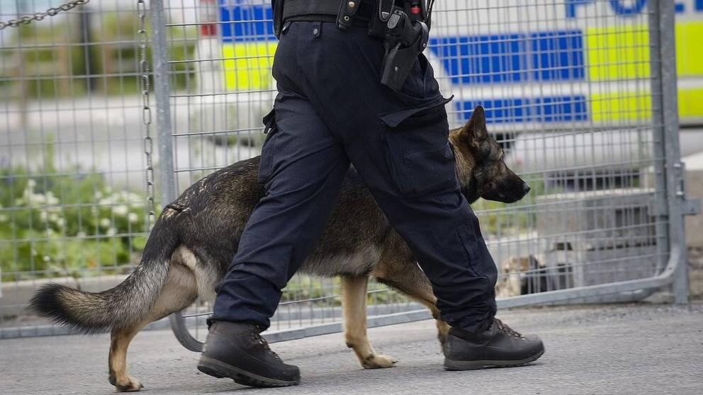 Polishund går bredvid polis