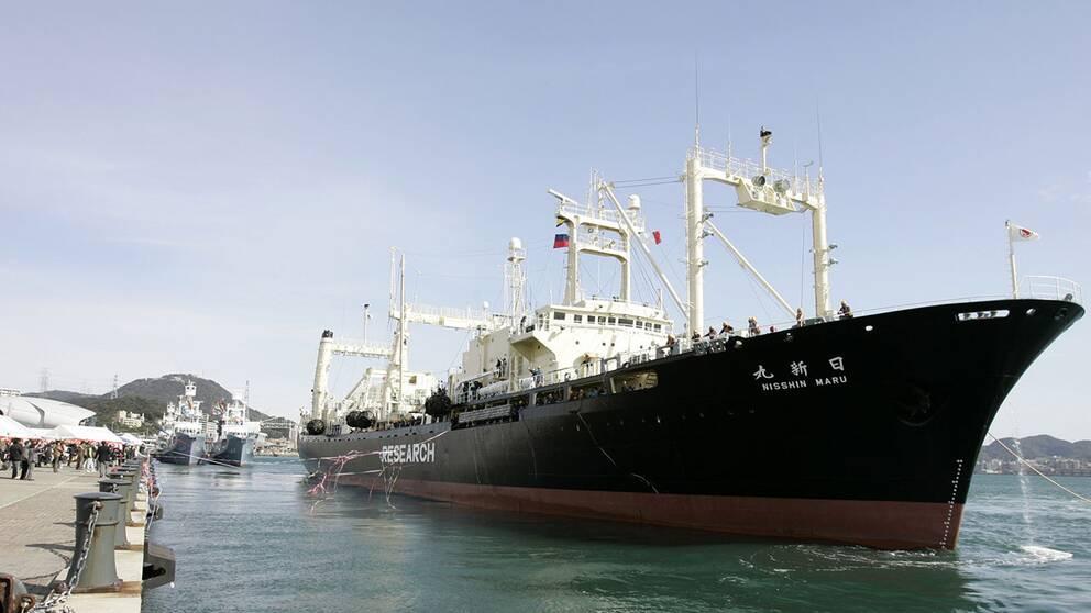 Det japanska valjaktsfartyget Nisshin Maru