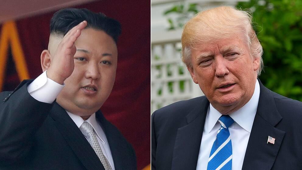Japan rustar for krig mot nordkorea