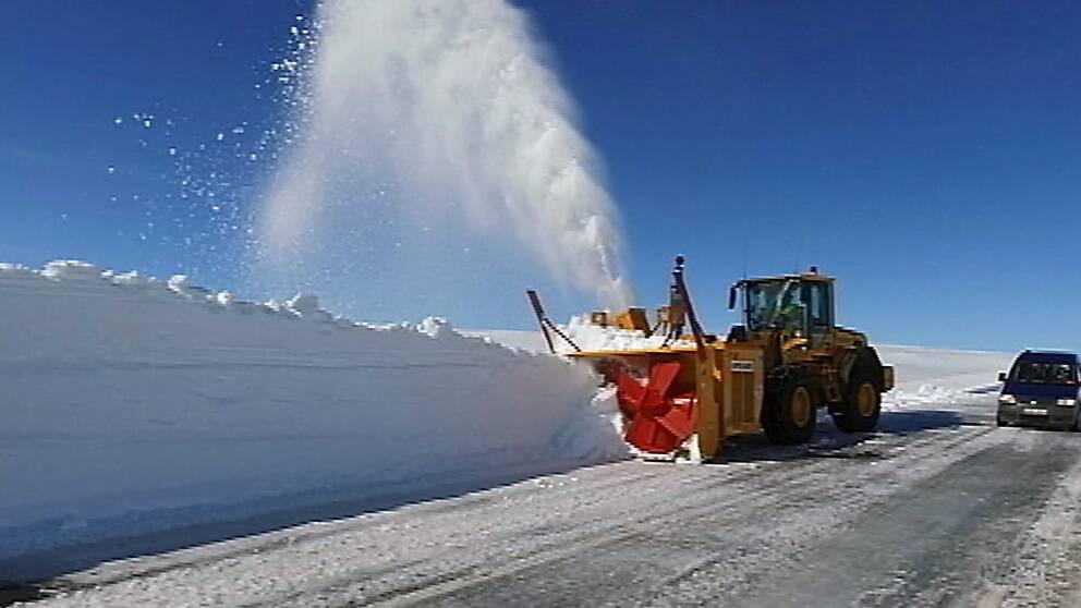 traktor med enorm snöslunga plogar fram vägen i Stekenjokk