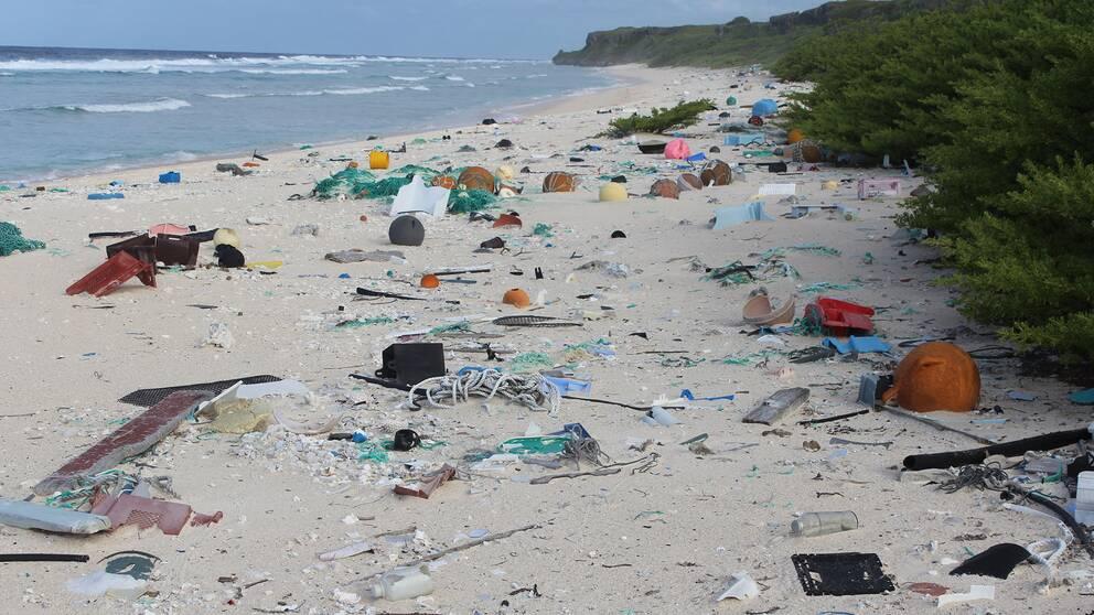 18 ton plast hittades på korrallön Henderson Island.