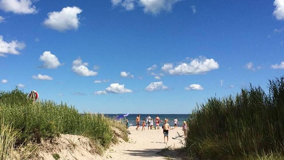 Gotland strand