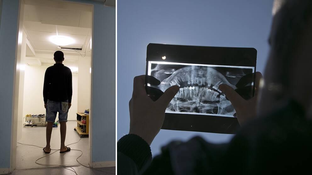 Flyktingboende för ensamkommande barn och bild från tandröntgen.