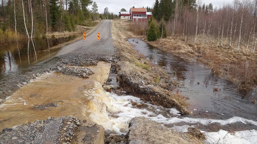 Översvämning i Lugnet utanför Bygdsiljum i Västerbotten den 19 maj efter snösmältning om mycket regn.