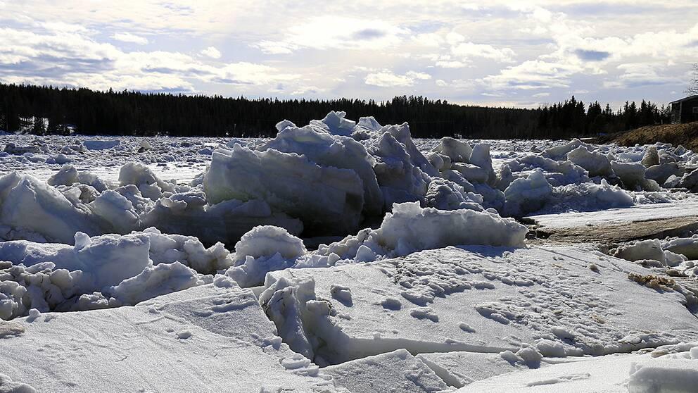 Islossning i Tärendöälven vid Lautakoski i Tornedalen i norra Norrbotten den 20 maj.