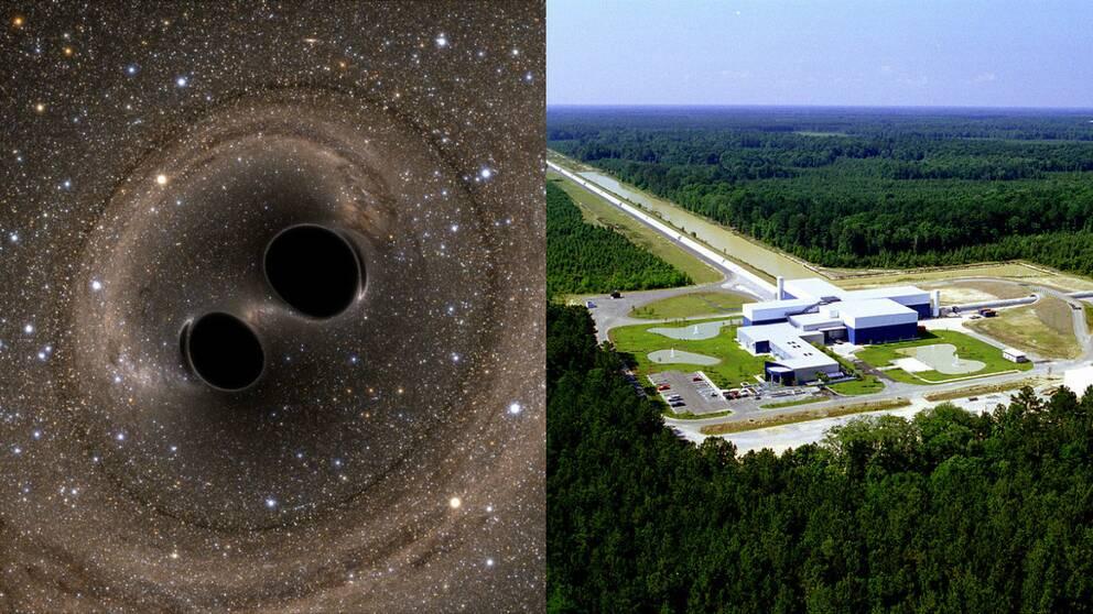 Nya gravitationsvagor upptackta