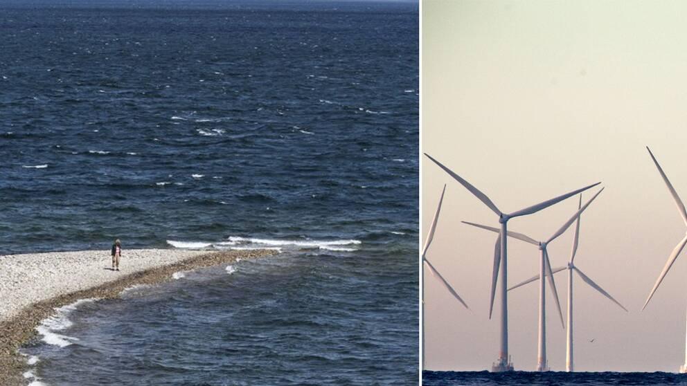 Hanöbukten och vindkraftverk