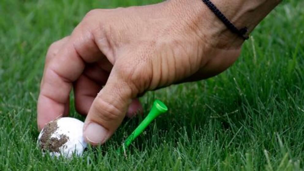 golfboll, peg