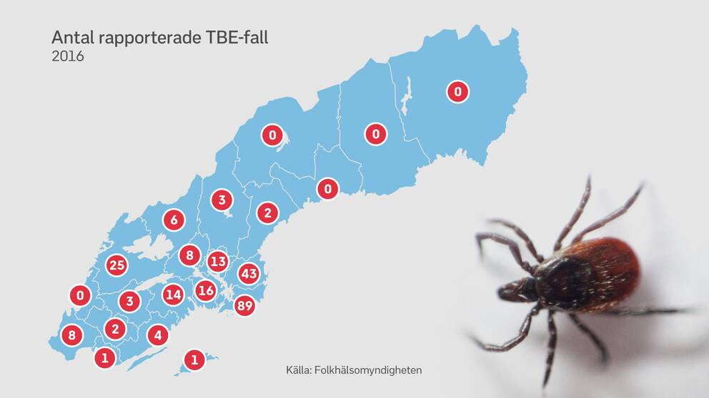 Karta med antal rapporterade fall av TBE i varje län