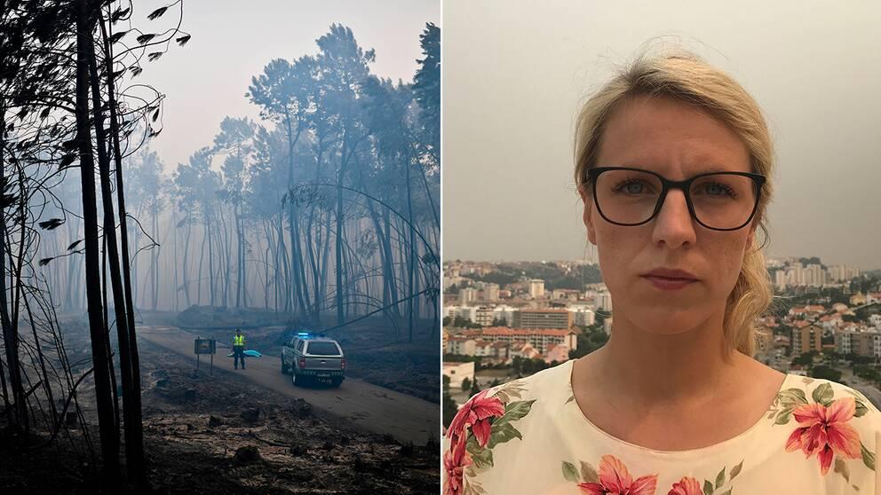 """SVT:s Ausi Petrelius är bara kilometer från den mest brandhärjade delen av Portugal: """"Det regnar askflagor""""."""