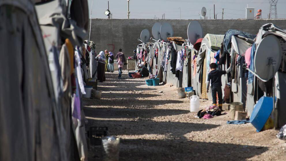 UNHCR: Rekordmånga på flykt