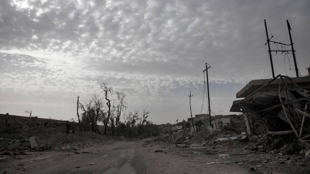 En gata i Mosul som varit full av liv och rörelse, men som nu vilar tyst i total förödelse.